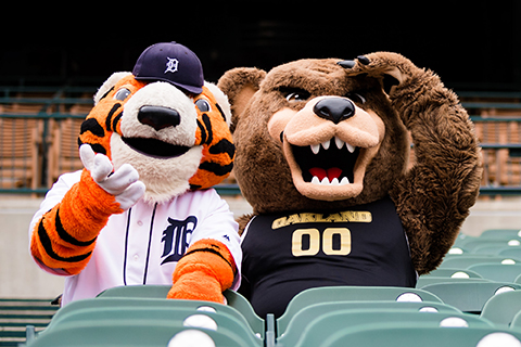 A photo of Paws the Tigers mascot and the OU Grizz in the seats at Comerica Park