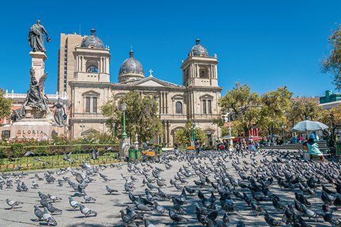 Pigeons lining the street in front of a large architectural church