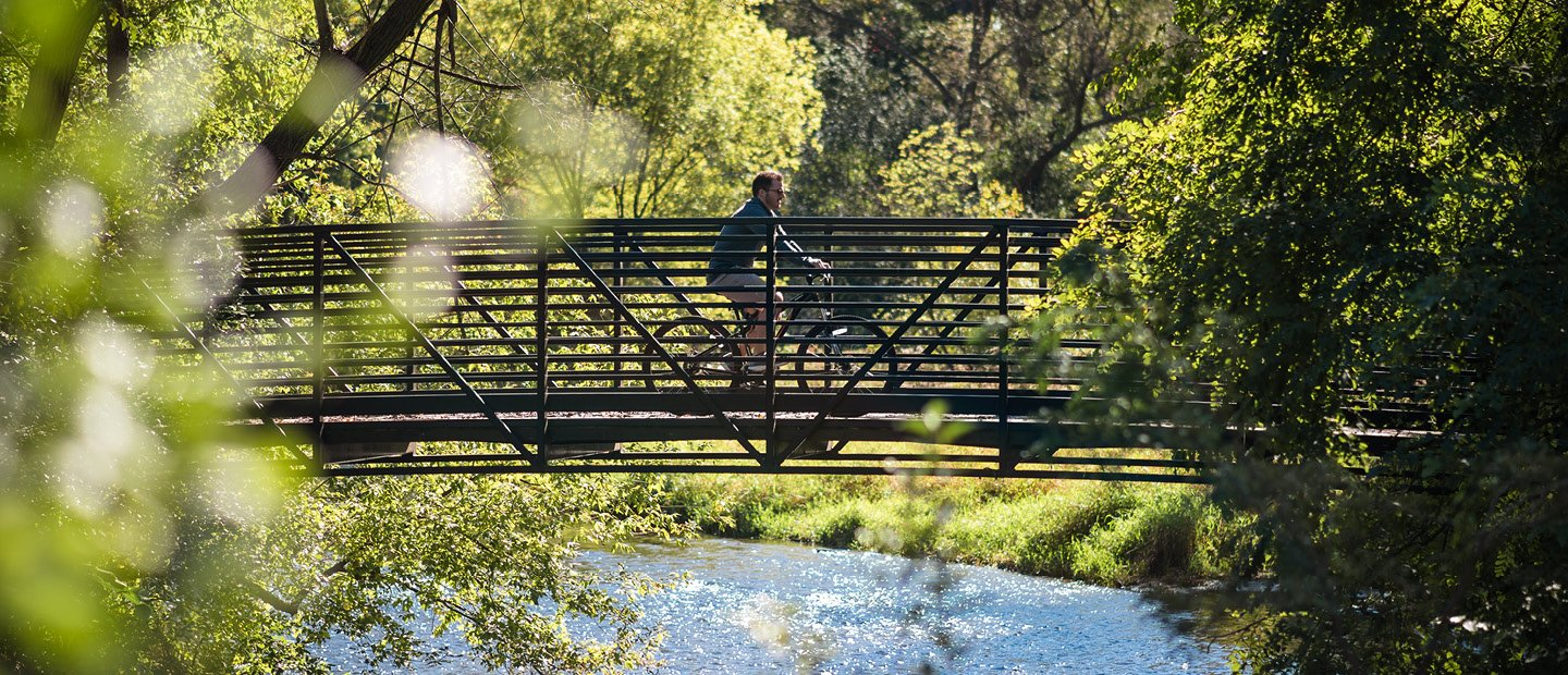 man riding a bicycle on a bridge over water in the woods