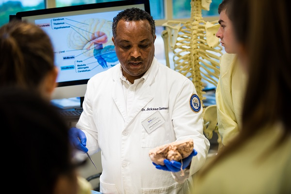 A faculty members hosts an anatomy session for students.
