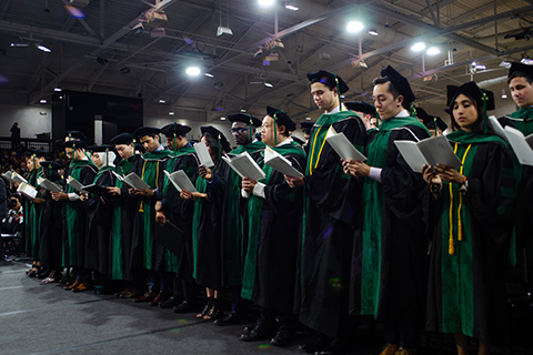 rows of graduating students in green and black gowns and caps, reading from a program