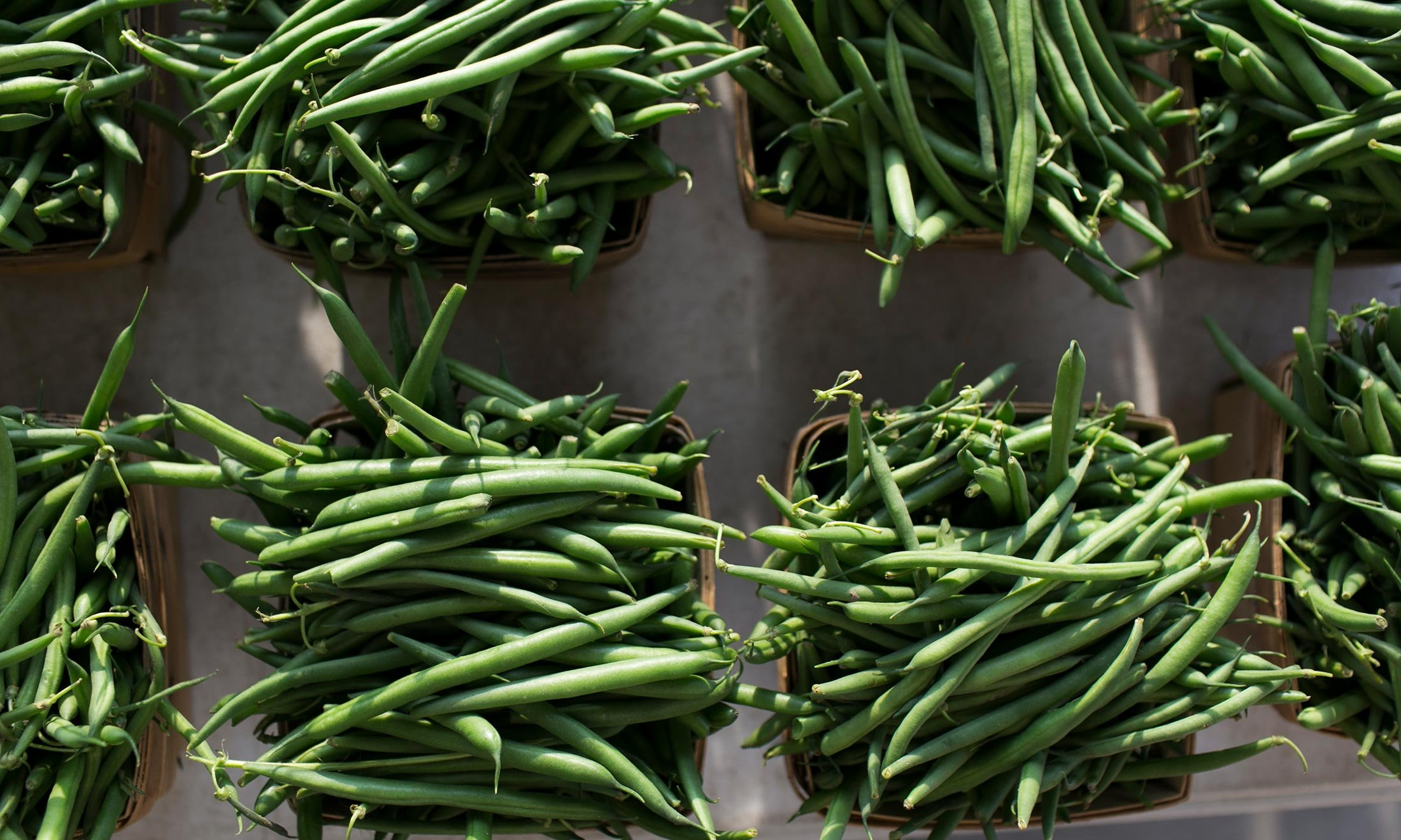 Freshly picked string beans at the Royal Oak Farmers Market