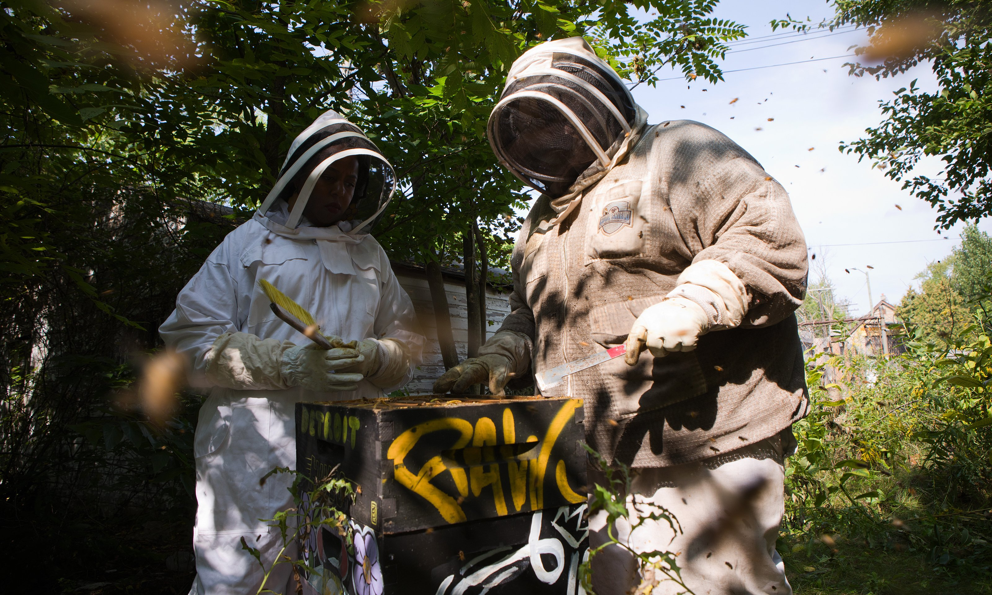 Two people working on a beehive