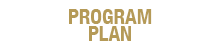 Program Plan Web Graphics