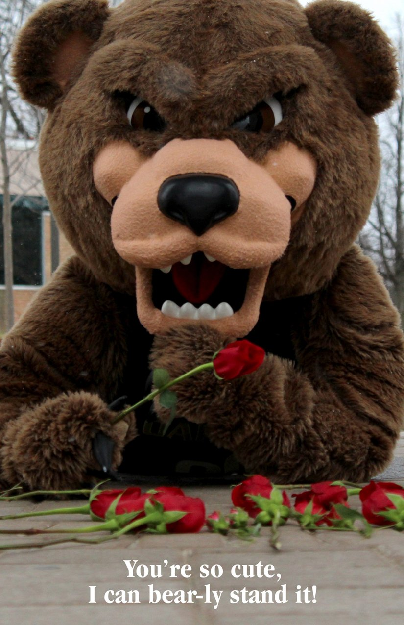 Grizz holding a rose and text saying You're so cute, I can bear-ly stand it!